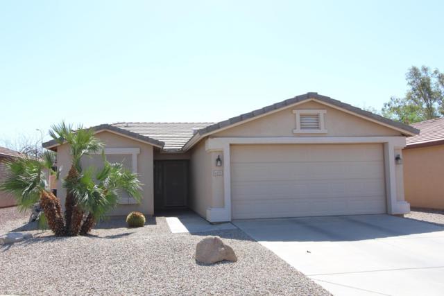 6371 S Granite Drive, Chandler, AZ 85249 (MLS #5927772) :: My Home Group