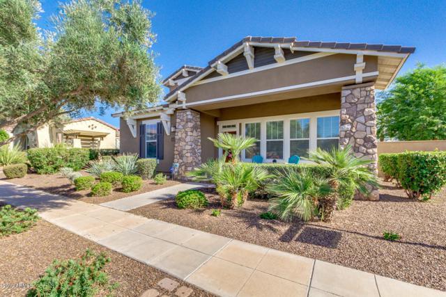 15197 W Larkspur Drive, Surprise, AZ 85379 (MLS #5927781) :: CC & Co. Real Estate Team