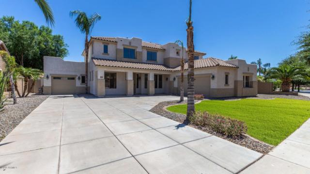 19329 E Raven Drive, Queen Creek, AZ 85142 (MLS #5927800) :: CC & Co. Real Estate Team