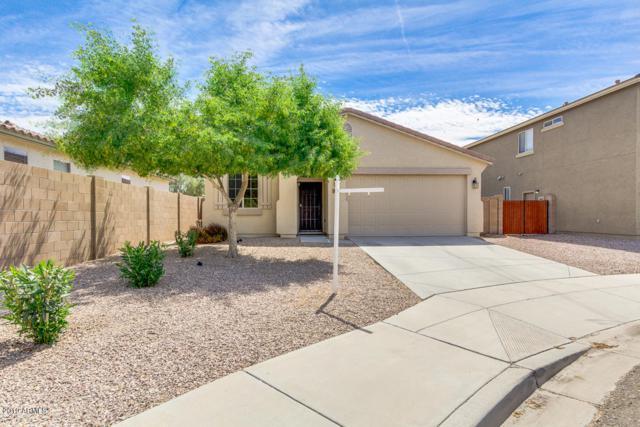 955 S 178TH Lane, Goodyear, AZ 85338 (MLS #5927802) :: CC & Co. Real Estate Team