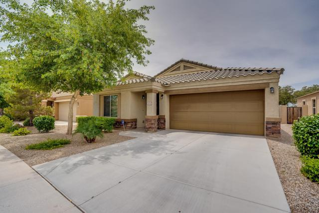 674 S Laveen Drive, Chandler, AZ 85226 (MLS #5927808) :: CC & Co. Real Estate Team