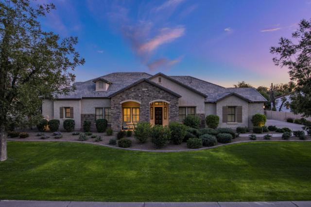 20191 E Via De Arboles, Queen Creek, AZ 85142 (MLS #5927823) :: Revelation Real Estate