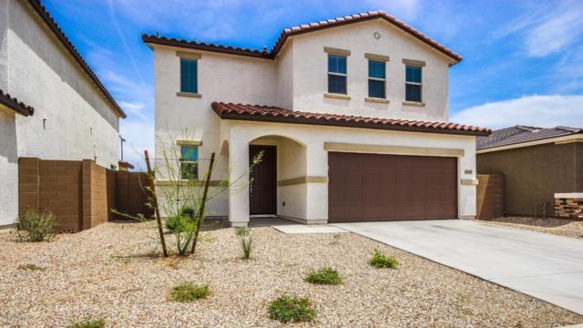 11433 N 165TH Lane, Surprise, AZ 85388 (MLS #5927837) :: Occasio Realty