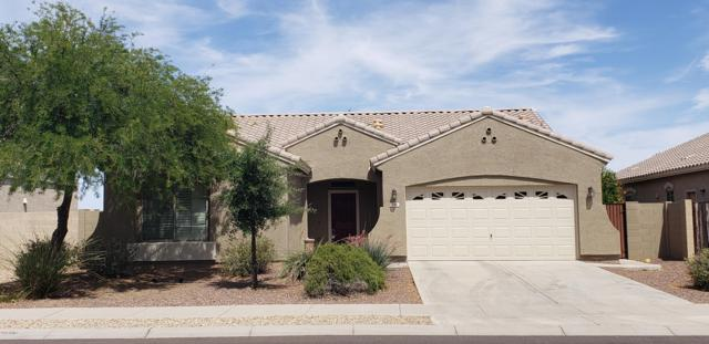 281 S 165TH Drive, Goodyear, AZ 85338 (MLS #5927838) :: CC & Co. Real Estate Team