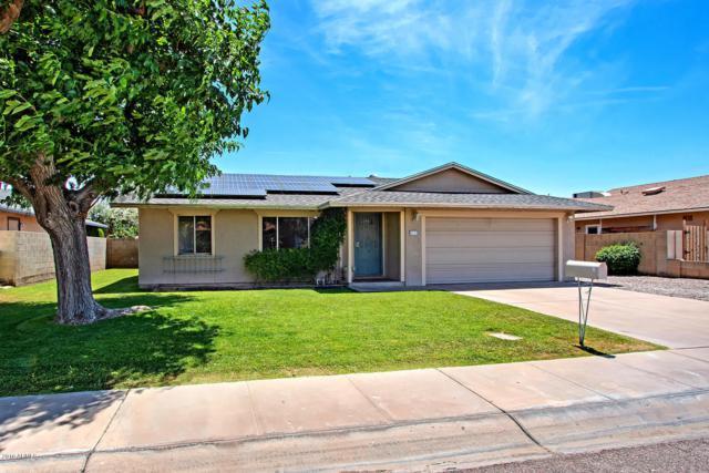5117 W Maui Lane, Glendale, AZ 85306 (MLS #5927840) :: CC & Co. Real Estate Team