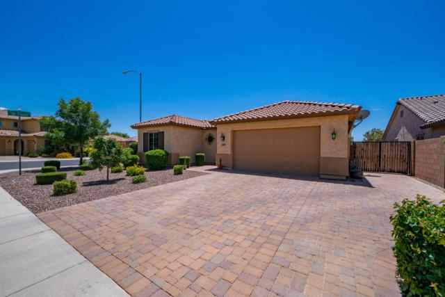 10851 E Quartet Avenue, Mesa, AZ 85212 (MLS #5927849) :: CC & Co. Real Estate Team