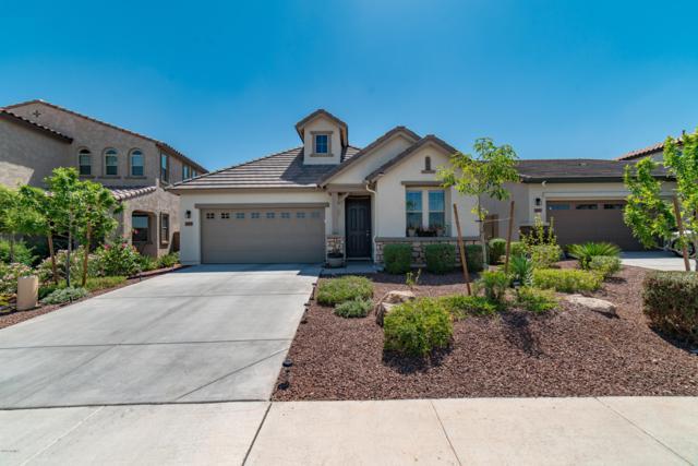 10109 W Angels Lane, Peoria, AZ 85383 (MLS #5927850) :: Homehelper Consultants