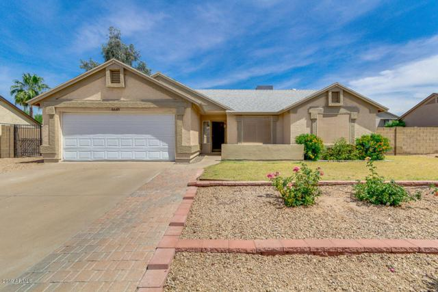 6648 E Ingram Street, Mesa, AZ 85205 (MLS #5927864) :: The Pete Dijkstra Team