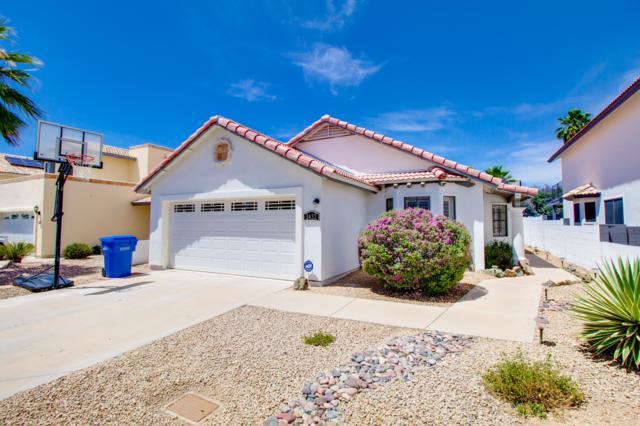 1432 E Rosemonte Drive, Phoenix, AZ 85024 (MLS #5927865) :: CC & Co. Real Estate Team