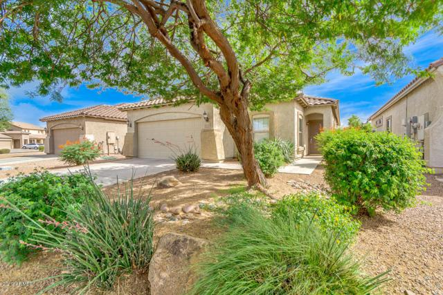 42950 W Martie Lynn Road, Maricopa, AZ 85138 (MLS #5927867) :: CC & Co. Real Estate Team