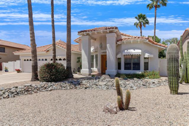 1150 E Sandra Terrace, Phoenix, AZ 85022 (MLS #5927871) :: CC & Co. Real Estate Team