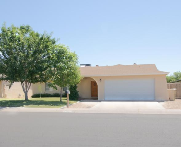 5145 N 69th Avenue, Glendale, AZ 85303 (MLS #5927873) :: CC & Co. Real Estate Team
