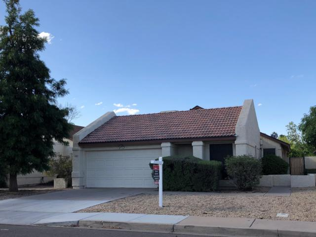 1206 W Estrella Drive, Chandler, AZ 85224 (MLS #5927893) :: Devor Real Estate Associates