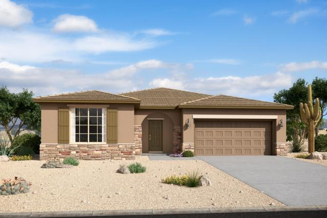 18833 W San Juan Avenue, Litchfield Park, AZ 85340 (MLS #5927899) :: Realty Executives