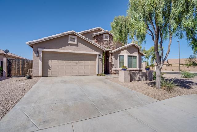 21051 E Sonoqui Drive, Queen Creek, AZ 85142 (MLS #5927900) :: The Pete Dijkstra Team