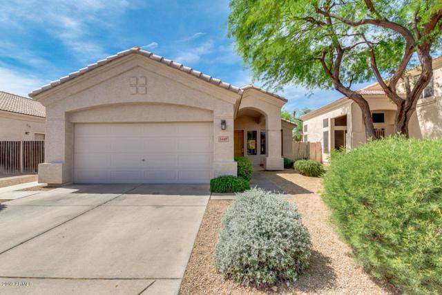 5449 W Milky Way, Chandler, AZ 85226 (MLS #5927902) :: CC & Co. Real Estate Team