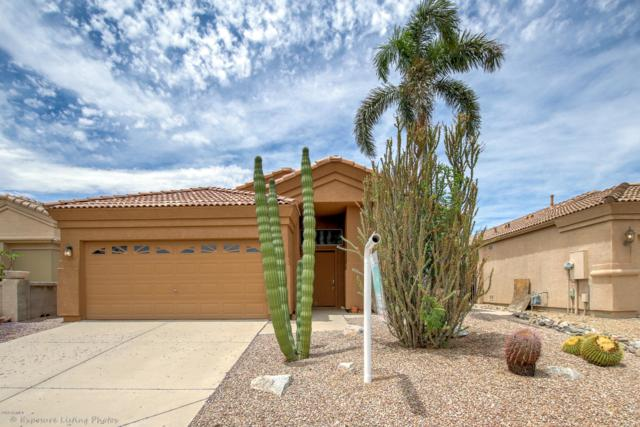 19442 N 23RD Way, Phoenix, AZ 85024 (MLS #5927935) :: The AZ Performance Realty Team