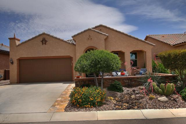 3937 N Smithsonian Drive, Florence, AZ 85132 (MLS #5927964) :: Riddle Realty