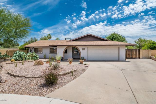 309 E Silver Creek Road, Gilbert, AZ 85296 (MLS #5927966) :: CC & Co. Real Estate Team