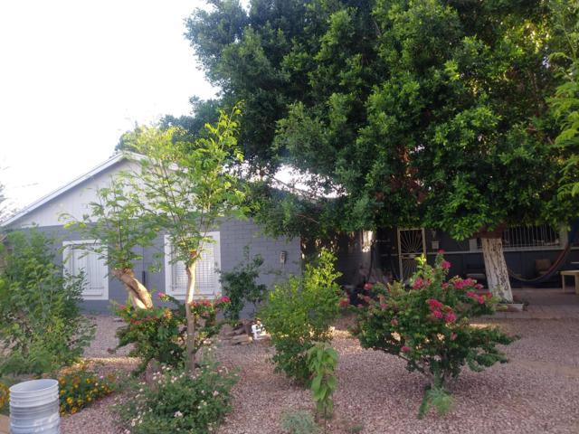 6431 W Medlock Drive, Glendale, AZ 85301 (MLS #5927974) :: The Carin Nguyen Team