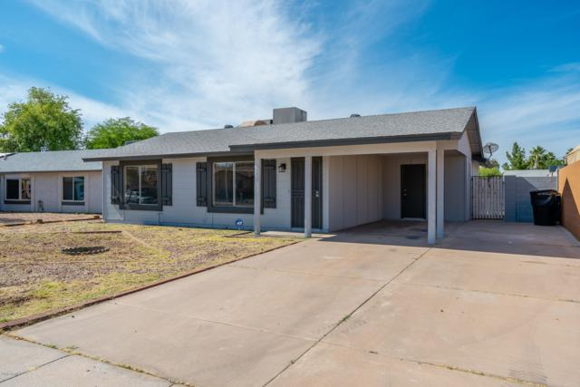 3534 W Tulsa Street, Chandler, AZ 85226 (MLS #5927982) :: Openshaw Real Estate Group in partnership with The Jesse Herfel Real Estate Group
