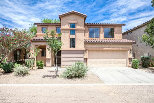 2574 E Riviera Drive, Chandler, AZ 85249 (MLS #5927990) :: CC & Co. Real Estate Team