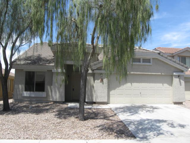 5862 S 238TH Lane, Buckeye, AZ 85326 (MLS #5928002) :: CC & Co. Real Estate Team