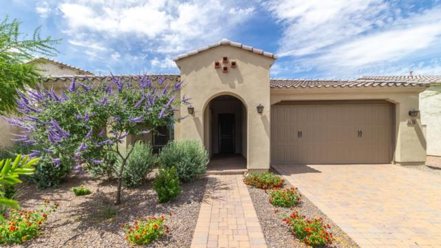 4656 S Centric Way, Mesa, AZ 85212 (MLS #5928004) :: Team Wilson Real Estate