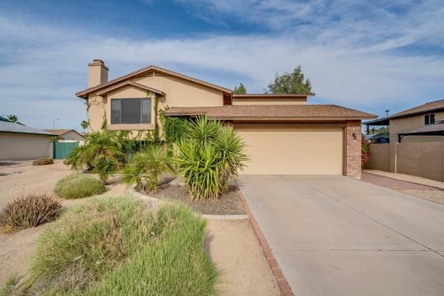 1245 N Raven, Mesa, AZ 85207 (MLS #5928012) :: Realty Executives