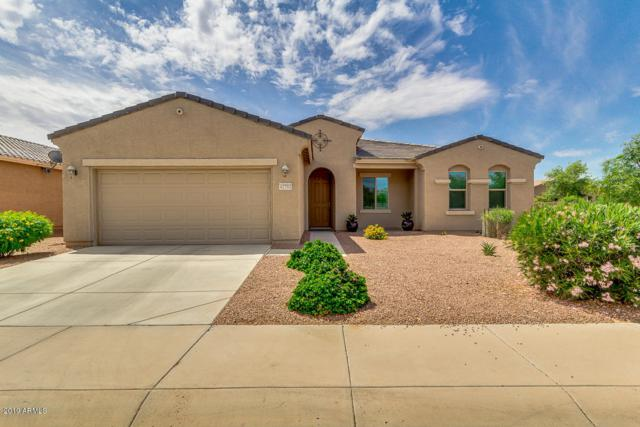42793 W Kingfisher Drive, Maricopa, AZ 85138 (MLS #5928041) :: The Everest Team at My Home Group