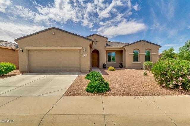 42793 W Kingfisher Drive, Maricopa, AZ 85138 (MLS #5928041) :: CC & Co. Real Estate Team
