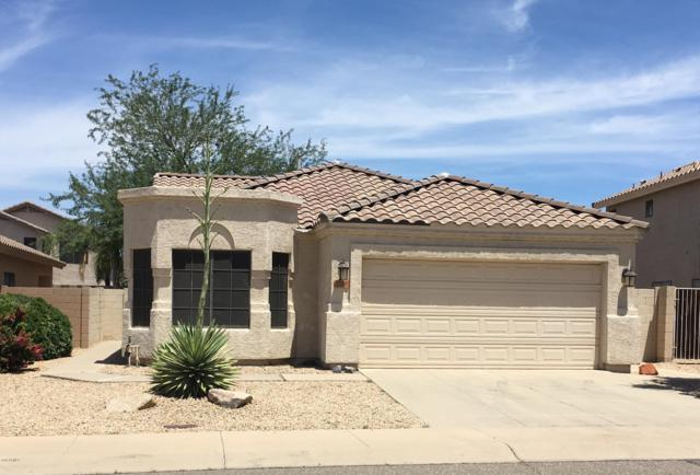 3714 W Tonopah Drive, Glendale, AZ 85308 (MLS #5928044) :: Realty Executives