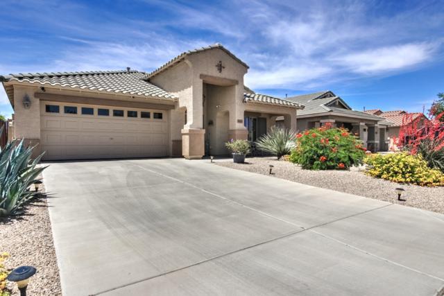 38474 N Dawn Court, San Tan Valley, AZ 85140 (MLS #5928056) :: Revelation Real Estate