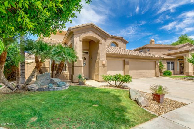 956 W Citrus Way, Chandler, AZ 85248 (MLS #5928068) :: CC & Co. Real Estate Team