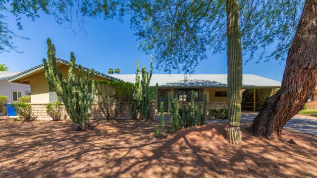 3319 S Kenwood Lane, Tempe, AZ 85282 (MLS #5928073) :: CC & Co. Real Estate Team