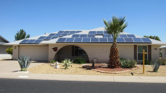 13022 W Jadestone Drive, Sun City West, AZ 85375 (MLS #5928078) :: The Pete Dijkstra Team