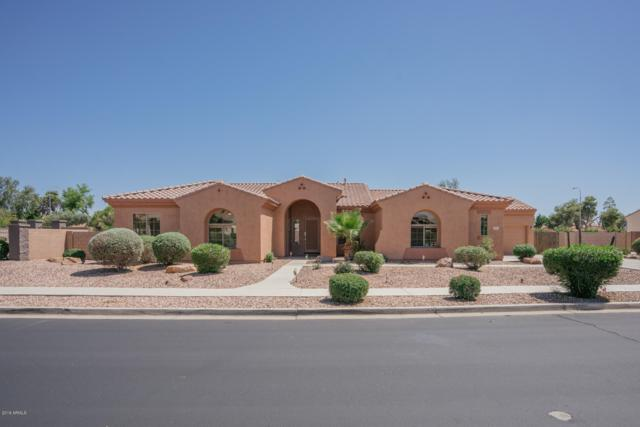 8019 W Luke Avenue, Glendale, AZ 85303 (MLS #5928079) :: CC & Co. Real Estate Team