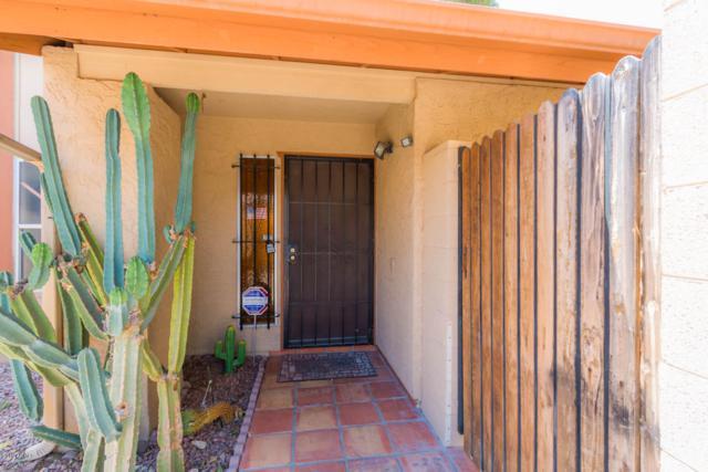 17825 N 45TH Avenue, Glendale, AZ 85308 (MLS #5928084) :: Realty Executives