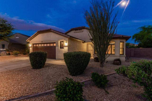 3103 W Park Street, Phoenix, AZ 85041 (MLS #5928091) :: The Pete Dijkstra Team