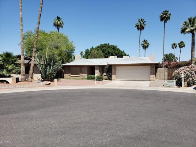 2628 W Mendoza Circle, Mesa, AZ 85202 (MLS #5928104) :: Arizona 1 Real Estate Team