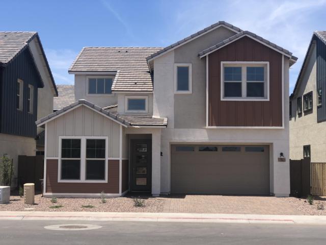 1142 S Cheri Lynn Drive, Chandler, AZ 85286 (MLS #5928110) :: CC & Co. Real Estate Team