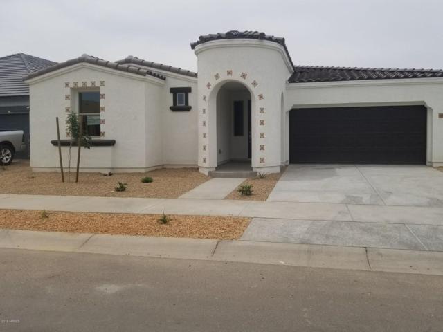 22622 E Via Del Palo, Queen Creek, AZ 85142 (MLS #5928115) :: Revelation Real Estate