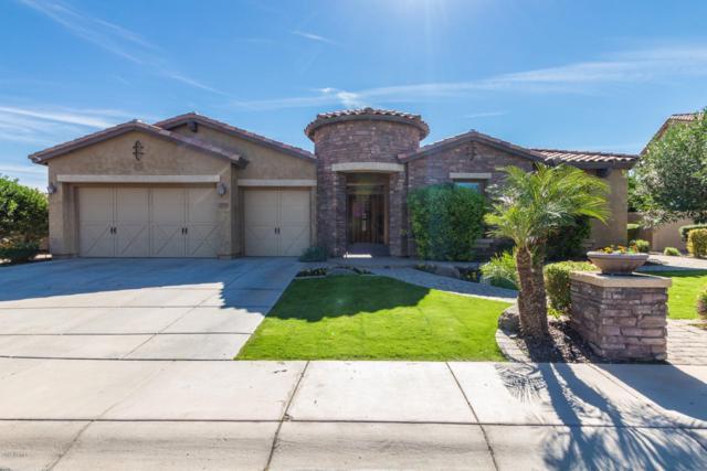 3593 E Grand Canyon Place, Chandler, AZ 85249 (MLS #5928123) :: Santizo Realty Group