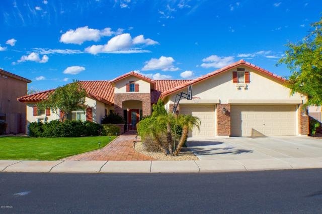 9524 W Running Deer Trail, Peoria, AZ 85383 (MLS #5928139) :: The Carin Nguyen Team