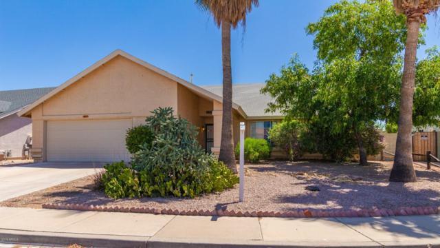 2631 N 66TH Street, Mesa, AZ 85215 (MLS #5928142) :: Arizona 1 Real Estate Team