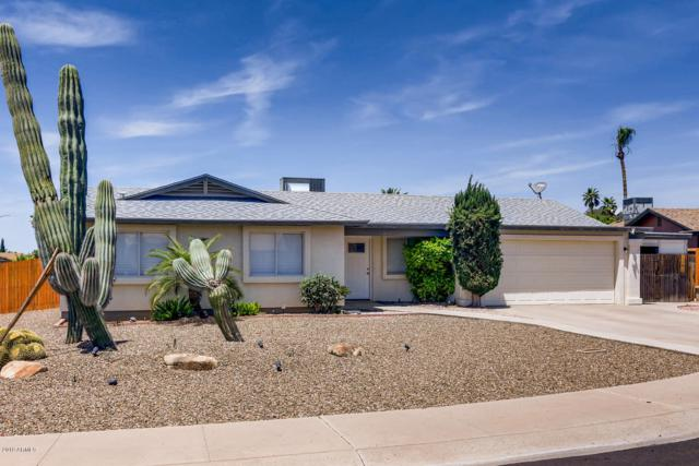 814 W Villa Maria Drive, Phoenix, AZ 85023 (MLS #5928162) :: The Pete Dijkstra Team