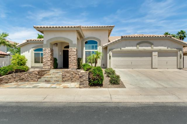 1824 E Briarwood Terrace, Phoenix, AZ 85048 (MLS #5928163) :: CC & Co. Real Estate Team