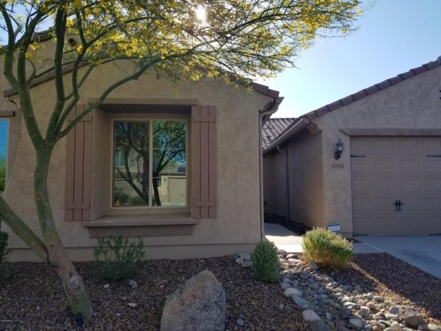 25548 N 104TH Drive, Peoria, AZ 85383 (MLS #5928168) :: The Carin Nguyen Team
