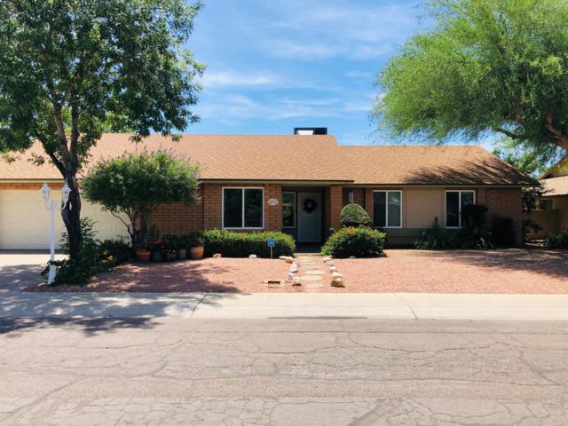 6033 W Poinsettia Drive, Glendale, AZ 85304 (MLS #5928172) :: Realty Executives