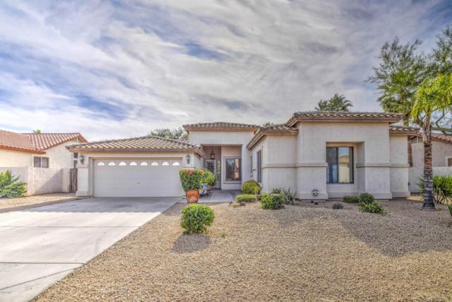 734 S Roanoke Street, Gilbert, AZ 85296 (MLS #5928191) :: Realty Executives
